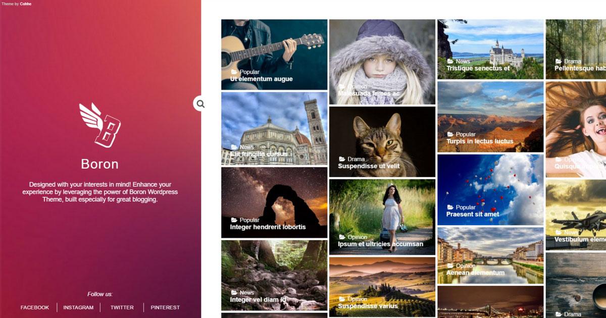 WordPress Boron Template grstis